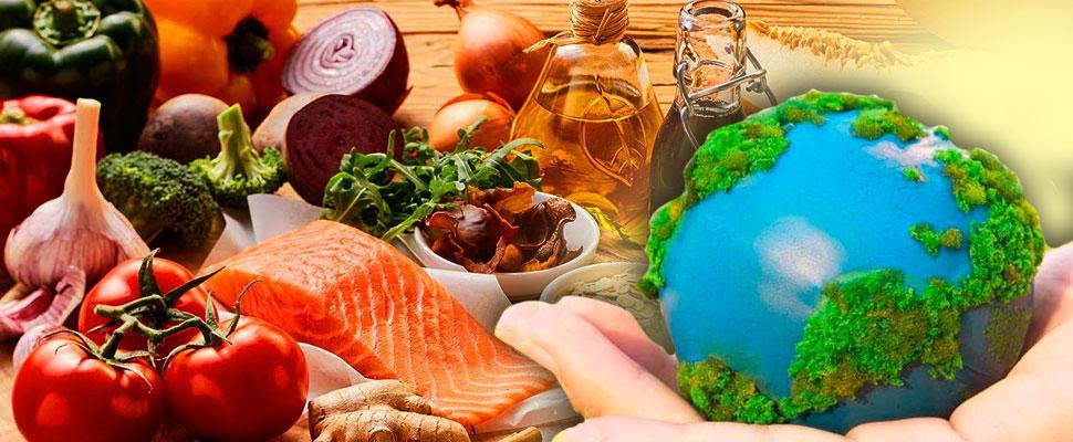 Comida no antropoceno: dietas saudáveis a partir de sistemas alimentares sustentáveis