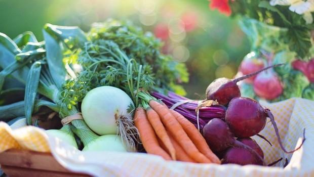Pesquisa mostra que 90% dos brasileiros têm interesse em alimentos vegetais