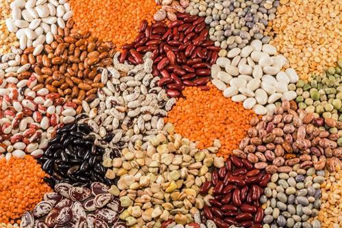 PULSES, como esses ingredientes estão ajudando a revolução Plant Based