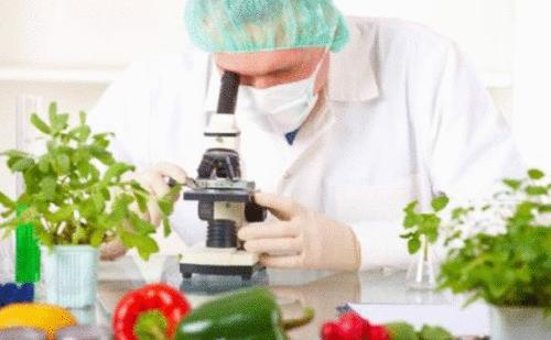 INTERNACIONAL: As 10 empresas de alimentos mais inovadoras de 2020