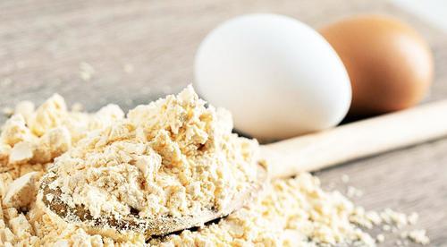 Ovox Brasil construirá a primeira indústria de ovo orgânico em pó em Campo Grande (MS)