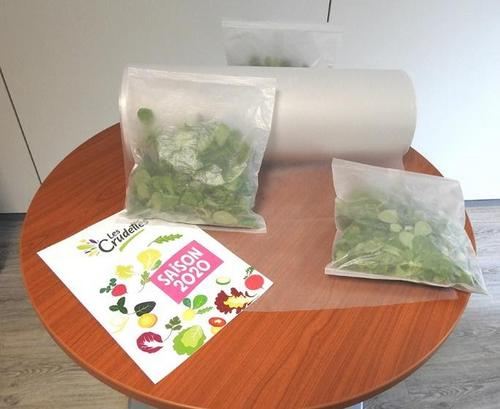 INTERNACIONAL: Sirane desenvolve embalagens totalmente sem plásticos para saladas